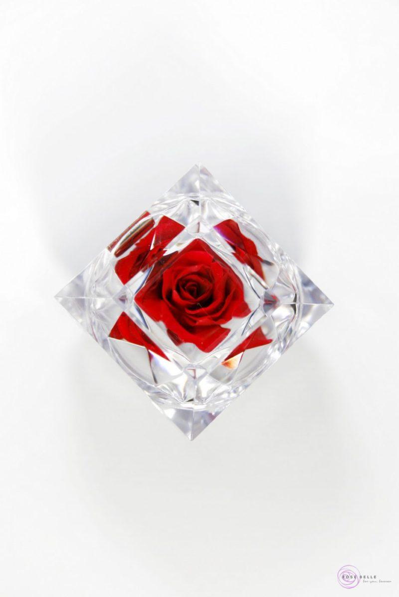 Czerwona róża w brylancie.