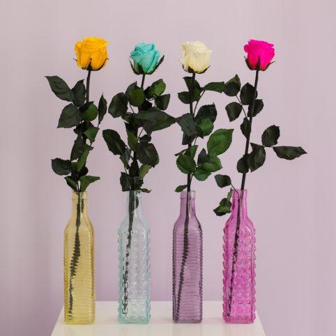 Butelki kolorowe z różami
