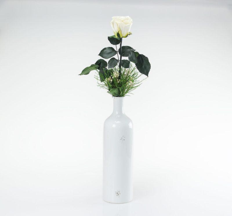 Zestaw wazon z różą