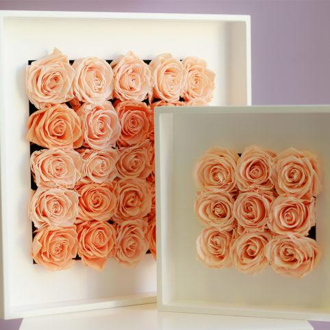 kwiaty stabilizowane idealnie się prezentują w kompozycjach ściennych