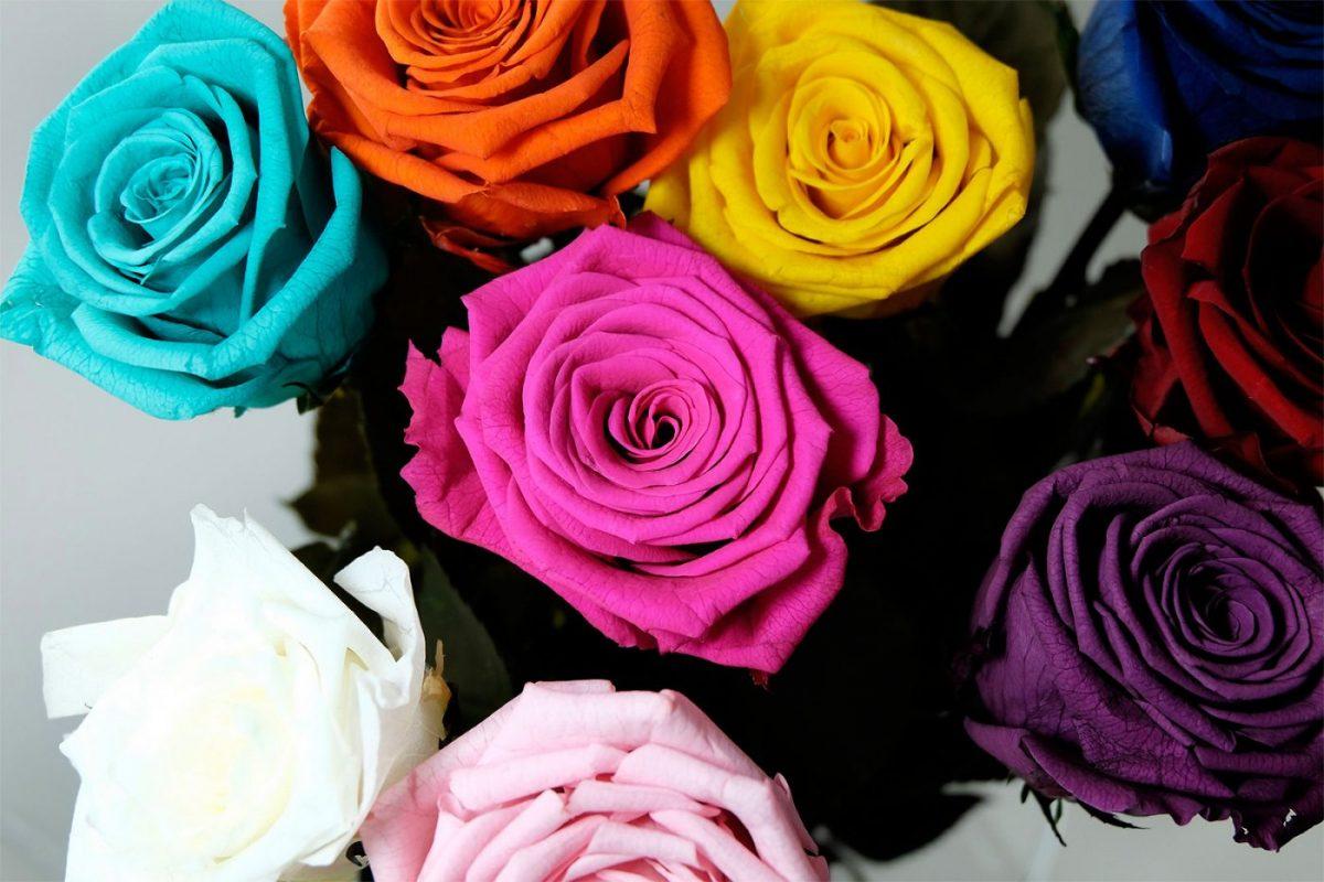 Kwiaty wieczne