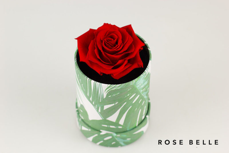 Mini Box Nature z czerwona różą