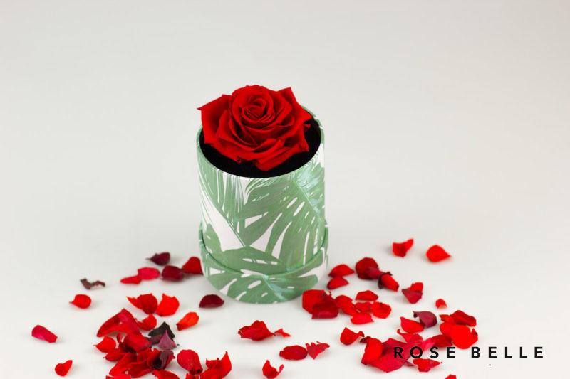 Mini Box Nature z czerwona różą w aranżacji z płatkami