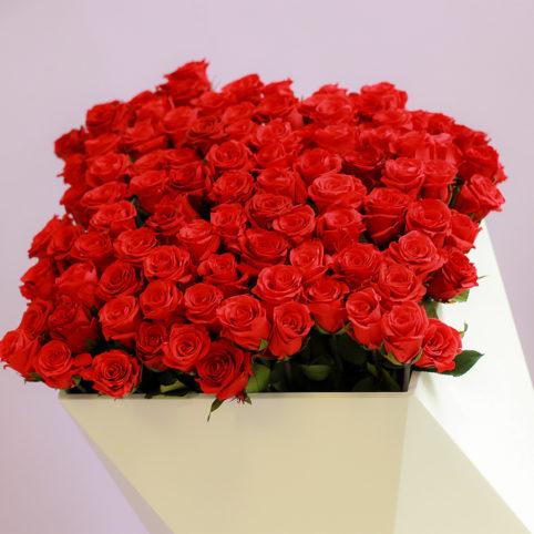 Piękne kwiaty stabilizowane w kolorze czerwonym