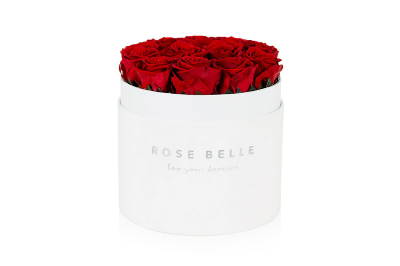 Rose Belle Box XL flokowany