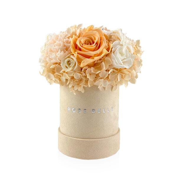 Rose Belle Box S makadamia DeLuxe brzoskwiniowy z goździkami
