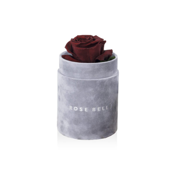 Rosebelle Box S Flokowany szary