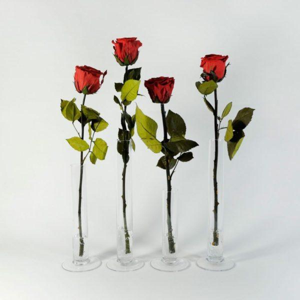 Rose Belle - róże krótkie w wazonikach menzurkach.